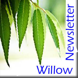 WillowNewsletter