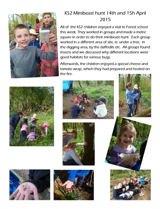 Forest School 14th15th April 2015