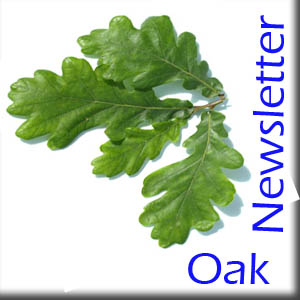 Oak Home Schooling Newsletter – Issue 3